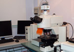Epifluorescence microscope